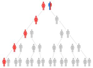 mtDNA-tree